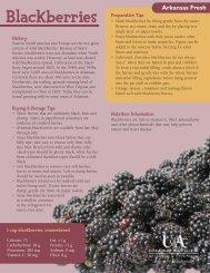 Arkansas Fresh: Blackberries - University of Arkansas Cooperative ...
