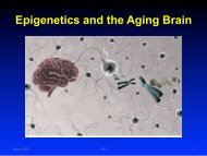 Epigenetics and the Aging Brain