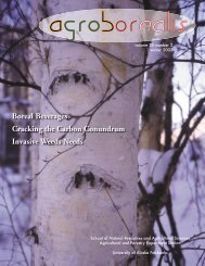 Birch: white gold in the boreal forest - University of Alaska Fairbanks