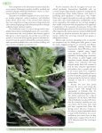 Restaurant Interviews to Determine Demand for Baby Greens in ... - Page 6