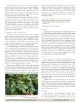 Native Plant Materials for Economic Development in Southeast Alaska - Page 7