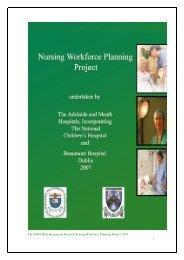 Workforce Planning Report 2007 - Nursing Information Research ...