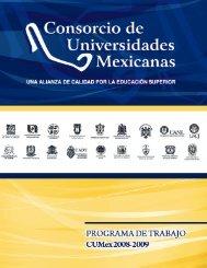 Programa de Trabajo 2008-2009 - UAZ