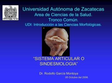 Sinoviales - Universidad Autónoma de Zacatecas