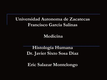 Universidad Autonoma de Zacatecas Francisco García Salinas ...