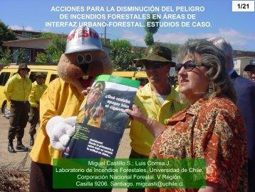 acciones para la disminución del peligro de incendios forestales en ...