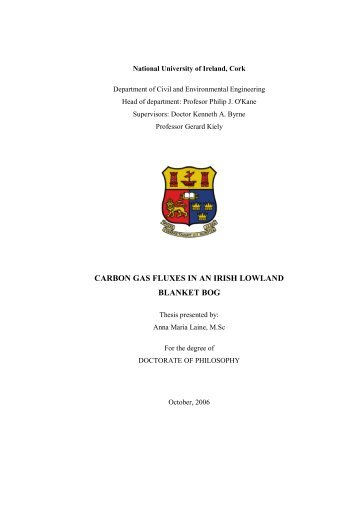 PhD Thesis, 2006 - University College Cork