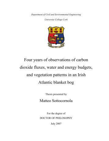 phd thesis binding cork