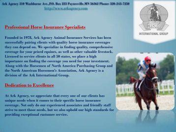 Horse Insurance   Arkagency