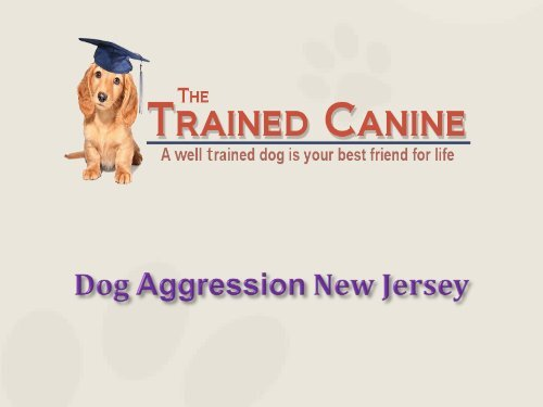 Dog Aggression New Jersey