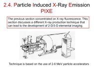 2.4. Particle Induced X-Ray Emission PIXE
