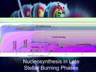 9) Nucleosynthesis in Late Stellar Burning Phases - ISNAP