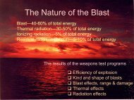 The Nature of the Blast