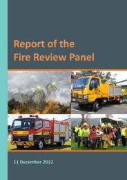 Report of the Fire Review Panel - MKRFA