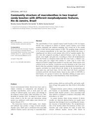 Community structure of macrobenthos in two tropical sandy ... - UFF