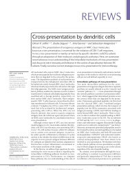 Cross-presentation by dendritic cells