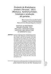 Sem título-3 - Editora UFJF