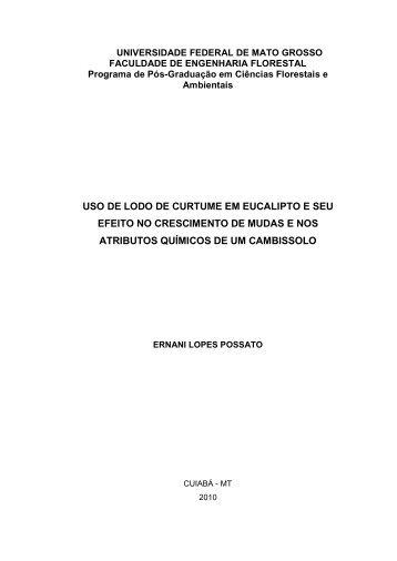 Dissertação - UFMT