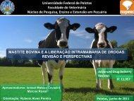 Apresentação - Universidade Federal de Pelotas