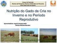Nutrição do Gado de Cria no Inverno e no Período Reprodutivo