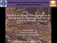 Resumo - Universidade Federal de Pelotas
