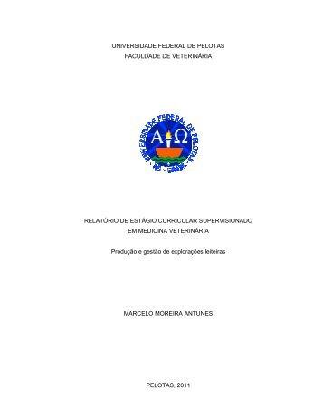 Anexo 1 - Universidade Federal de Pelotas