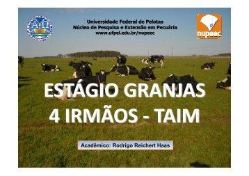 Estágio Granjas 4 Irmãos TAIM - Universidade Federal de Pelotas