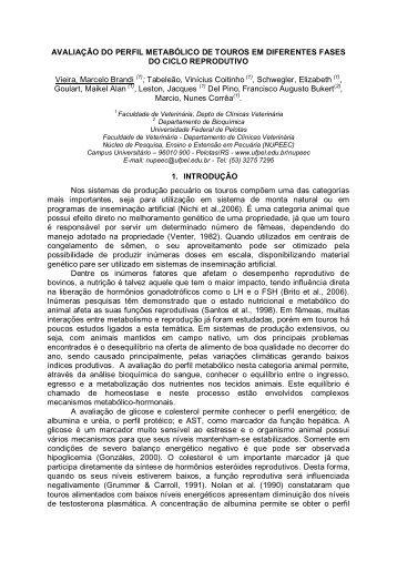 Faça o download - Universidade Federal de Pelotas