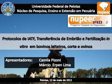 Protocolos de IATF, Transferência de Embrião e Fertilização in vitro ...