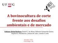 Fabiano Barbosa - A bovinocultura de corte frente aos ... - UFRGS