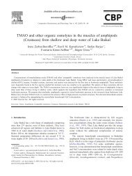 TMAO and other organic osmolytes in the muscles ... - ResearchGate