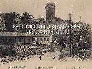 ESTUDIO DEL TRIÁSICO EN ARCOS DE JALÓN