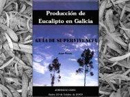 Producción de Eucalipto en Galicia
