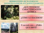 Eucalipto. Biorrefinería para energía y productos químicos.