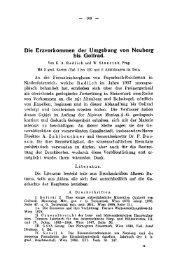 Die Erzvorkommen der Umgebung von Neuberg bis Gollrad,