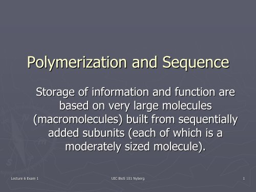Polymerization and Sequence