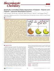 Kinetically Controlled Cellular Interactions of Polymer-Polymer