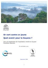 Or vert contre or jaune Quel avenir pour la Guyane - Comité français ...