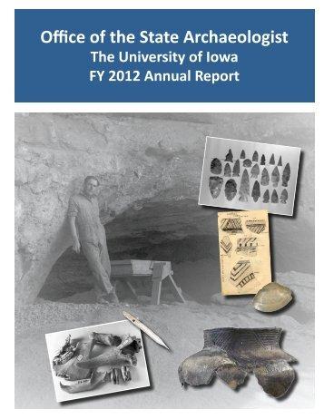 FY 2012 Annual Report - University of Iowa