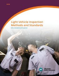 Light Vehicle Inspection Methods and Standards - Manitoba Public ...