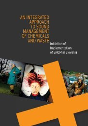 an integrated approach to sound management of chemicals and waste