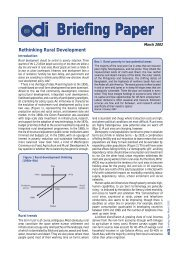 Rethinking Rural Development: Briefing Paper - UK Food Group