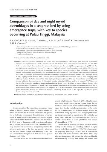Comparison of day and night mysid assemblages in a seagrass bed ...