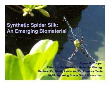 Synthetic Spider Silk: An Emerging Biomaterial