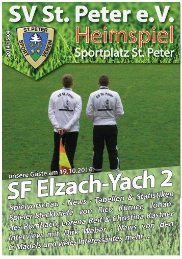 SVS-Heimspiel 2014/15-04