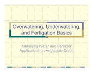 Overwatering, Underwatering, and Fertigation Basics