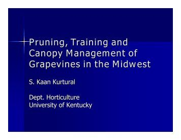 Pruning, Training and Canopy Management of Grapevines in the ...