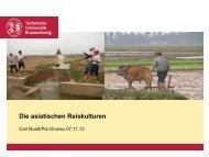 Download als *.pdf, 723 kb - Prof. Dr. Ulrich Menzel