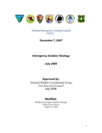Interagency Aviation Strategy - July 2008 - National Wildfire ...
