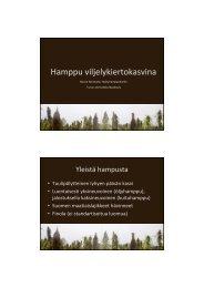 Hamppu viljelykierrossa, Noora Norokytö, Hyötyhamppu-hanke - MTK
